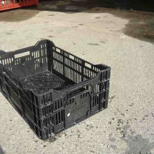 Photo of CRATES